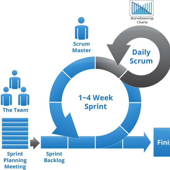Scrum Training and Portal
